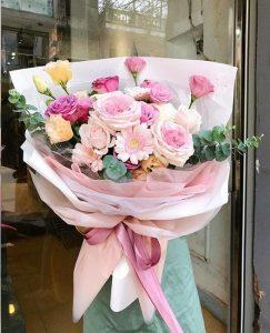 hoa ươi liên hà